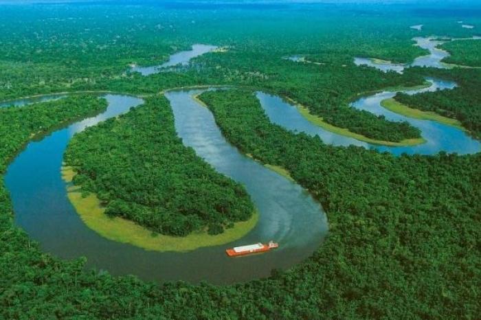 Brasil crea consejo para protección de la Amazonía