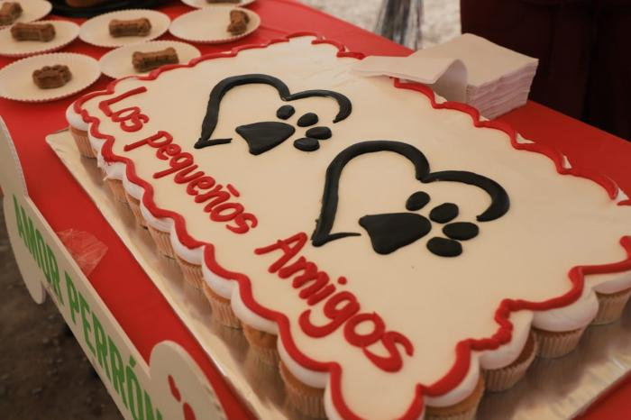 Celebran Amistad Con Mascotas En Gu