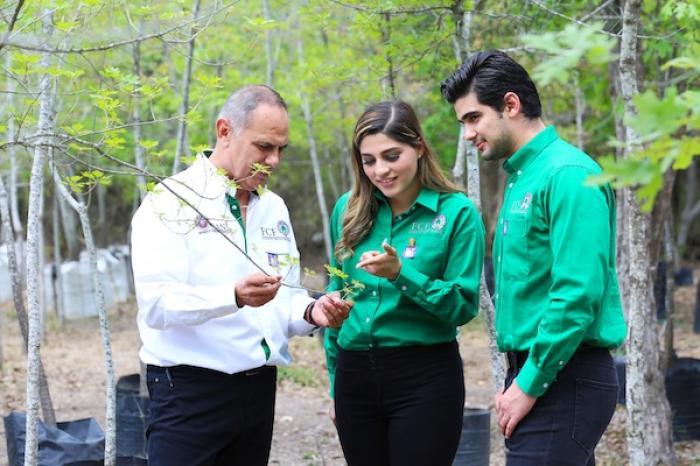 Ciencias Forestales: excelencia nacional con clase mundial