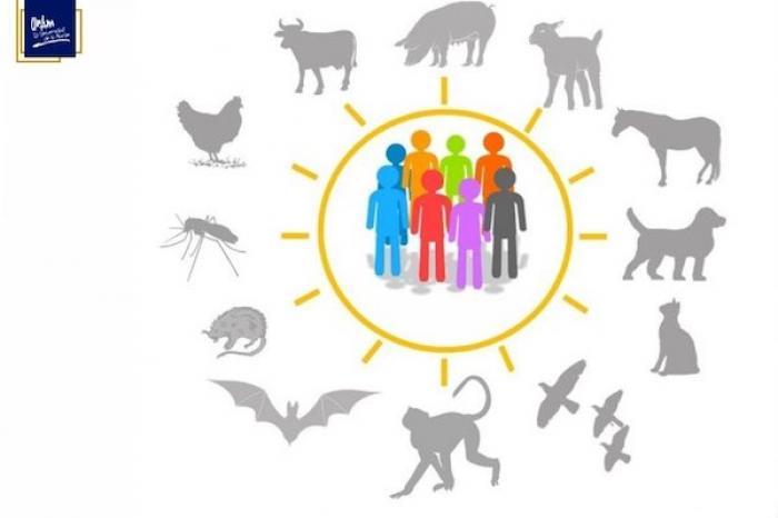 Necesario monitorear si humanos transmiten SARS-CoV-2 a animales