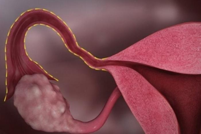 Advierten cómo puede afectar COVID-19 los periodos menstruales