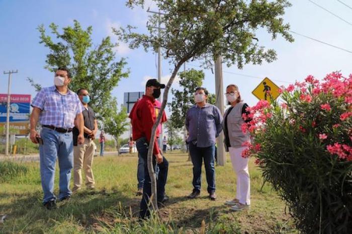 Intensifica Cristina Díaz mantenimiento a plazas y camellones